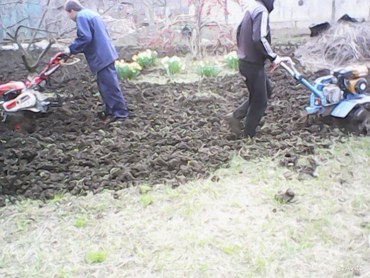 Фото огородов и дач