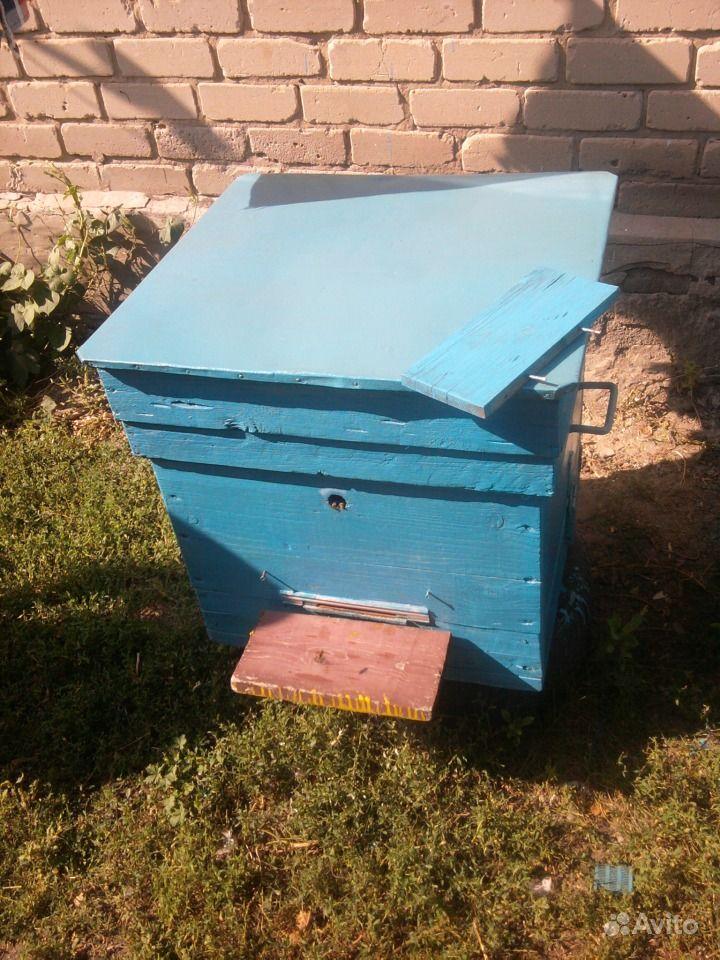 забронировать минимальной продажа пчел на авито курская область поля