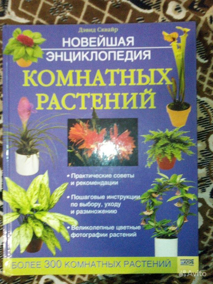 Энциклопедия комнатных растений с