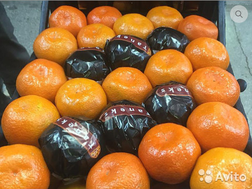 Купить мандарины оптом в москве