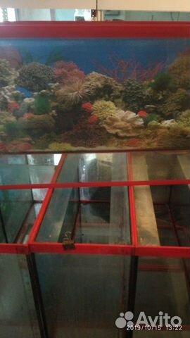 70 l akvarium